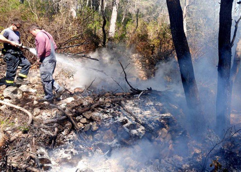 Požar otvorenog prostora u Gradini