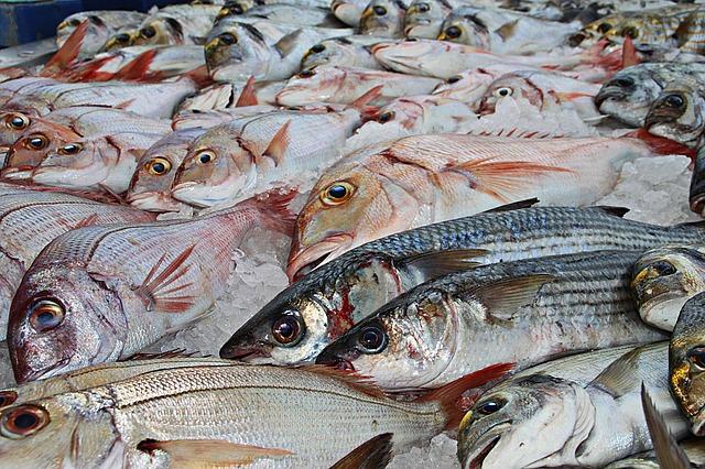 Obavijest za sve zainteresirane u procesu prodaje proizvoda ribarstva