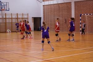 mini-rukometni-turnir-2016 (2)