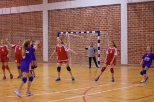 mini-rukometni-turnir-2016 (3)
