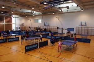 stolni-tenis-turnir-22102016 (20)