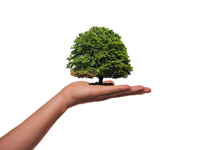 Natječaj za institucionalnu potporu udrugama u području poljoprivrede i zaštite okoliša u 2020. godini